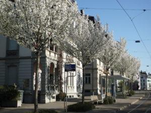 Seestrasse in Zürich-Enge